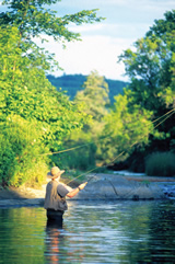 Fly Fishing in Stowe Vermont